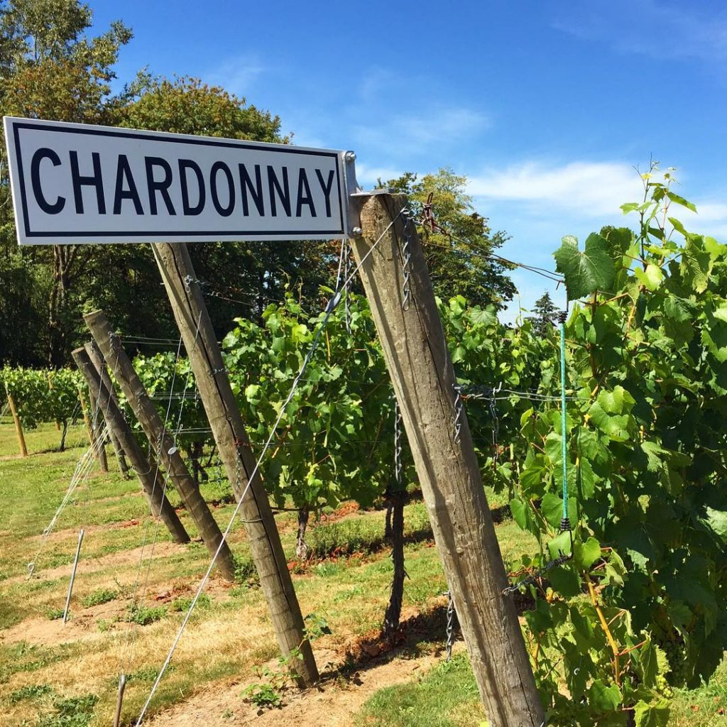 Chardonnay anyone? Love the street sign for these grapes athellip