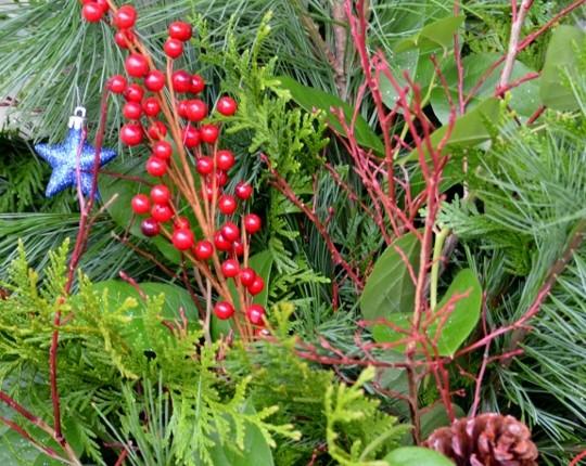 Close Up Christmas Planter
